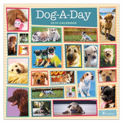 Tf Publishing 2019 Dog-A-Day Wall Calendar