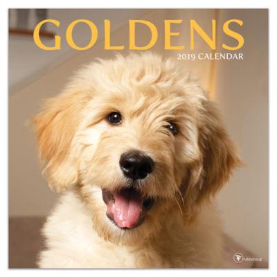 Tf Publishing 2019 Goldens Wall Calendar