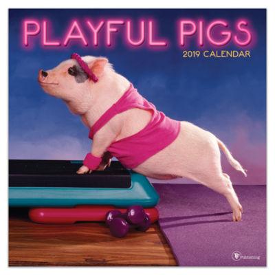 Tf Publishing 2019 Playful Pigs Wall Calendar