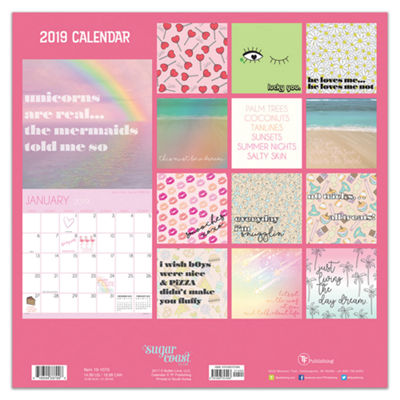 Tf Publishing 2019 Lolli Wall Calendar