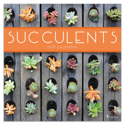 Tf Publishing 2019 Succulents Wall Calendar