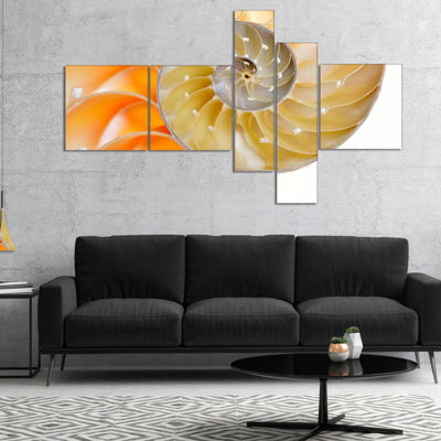 Designart Isolated Nautilus Shell Multipanel Abstract Canvas Art Print - 4 Panels