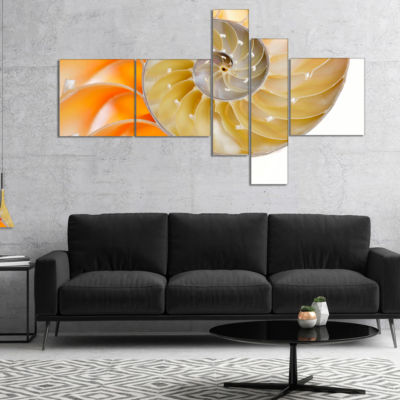 Designart Isolated Nautilus Shell Multipanel Abstract Canvas Art Print - 5 Panels