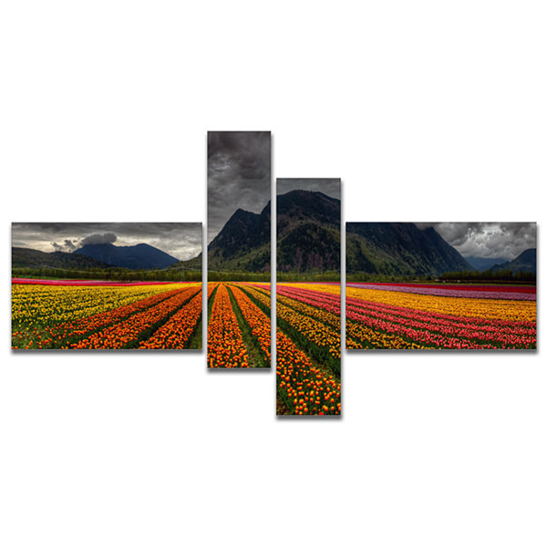 Designart Beautiful Colored Tulips Panorama Multipanel Large Landscape Canvas Art - 4 Panels