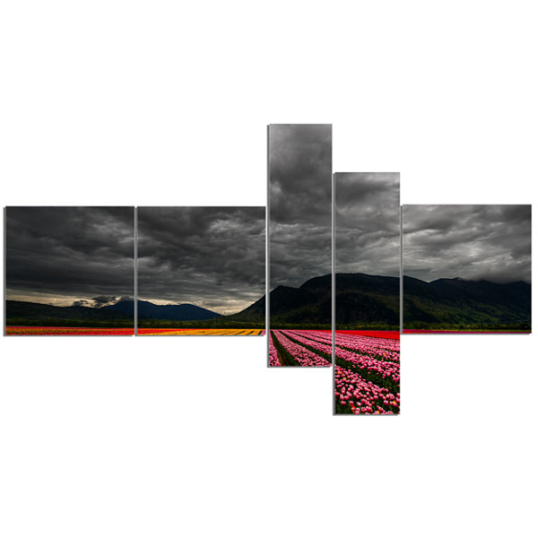Designart Parallel Rows Of Colorful Tulips Multipanel Large Landscape Canvas Art - 5 Panels