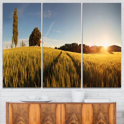 Designart Sunset Over Wheat Field In Slovakia Photography Canvas Art Print - 3 Panels