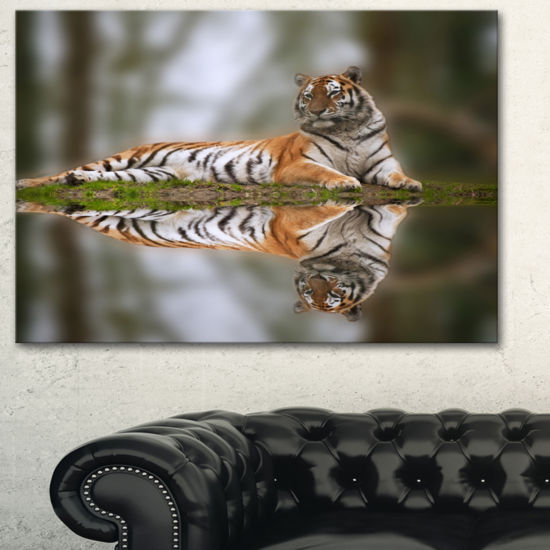 Designart Tiger Reflecting In Water Animal Photography Art
