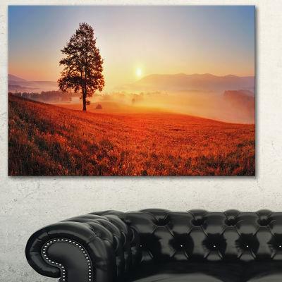 Designart Tree And Sun Landscape Photography Canvas Art Print - 3 Panels