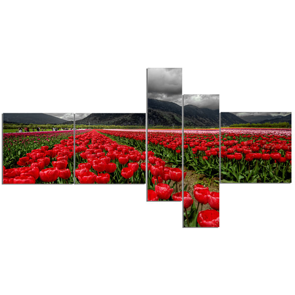 Designart Rows Of Bright Ruby Red Tulips Multipanel Landscape Canvas Art - 5 Panels