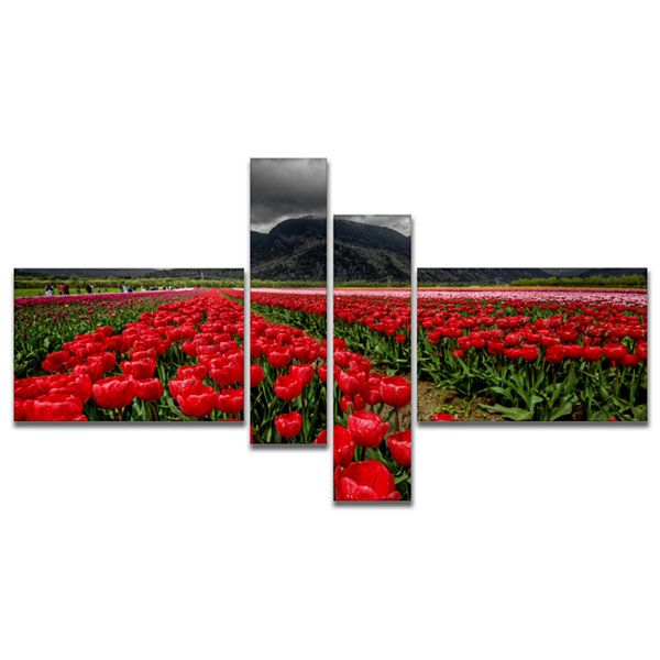Designart Rows Of Bright Ruby Red Tulips Multipanel Large Landscape Canvas Art - 4 Panels