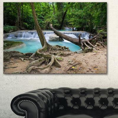 Designart Tropical Forest Scenery Photography Canvas Art Print