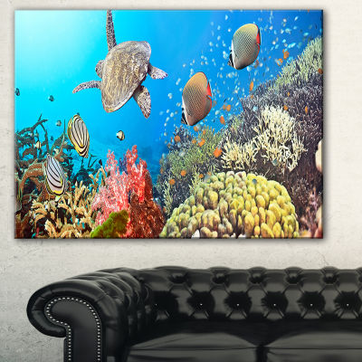 Designart Undersea Panorama Photography Canvas ArtPrint