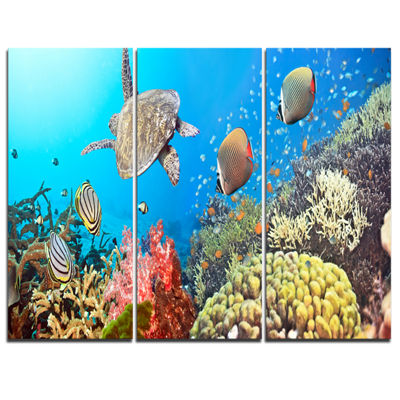 Designart Undersea Panorama Photography Canvas ArtPrint - 3 Panels