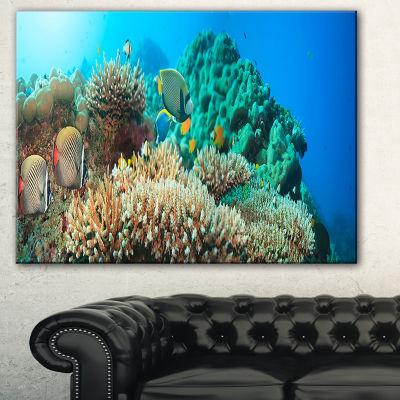 Designart Underwater Panorama Photography Canvas Art Print