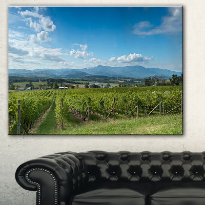Designart View Of The Yarra Valley Melbourne Photography Canvas Art Print - 3 Panels