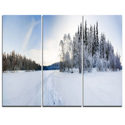 Designart Winter Field Landscape Photography Canvas Art Print - 3 Panels