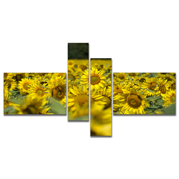 Designart Bright Yellow Sunflowers Field Multipanel Floral Canvas Art Print - 4 Panels