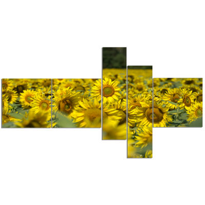 Designart Bright Yellow Sunflowers Field Multipanel Floral Canvas Art Print - 5 Panels