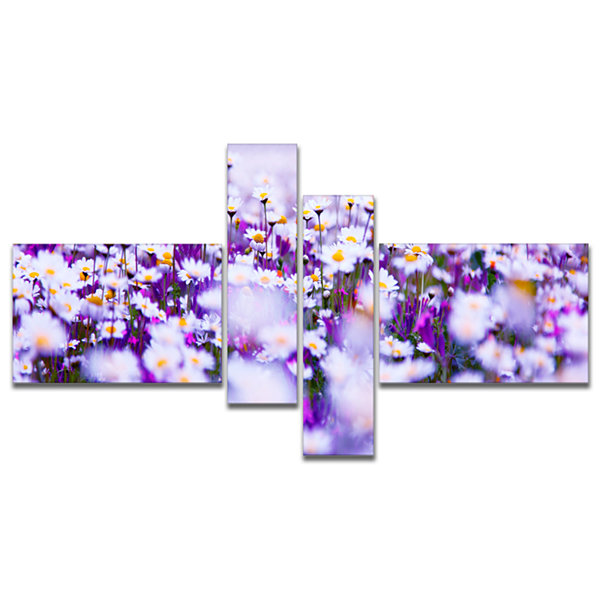Designart Daisy Field Photography Panorama Multipanel Floral Canvas Art Print - 4 Panels