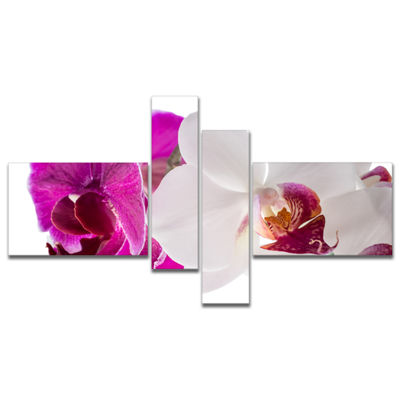 Designart Blooming Orchid Flowers Multipanel Abstract Print On Canvas - 4 Panels