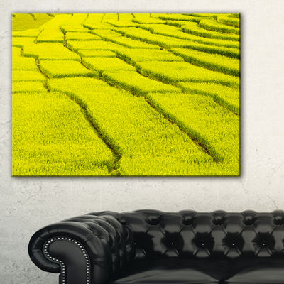 Designart Rice Field View Landscape Photography Canvas Art Print - 3 Panels