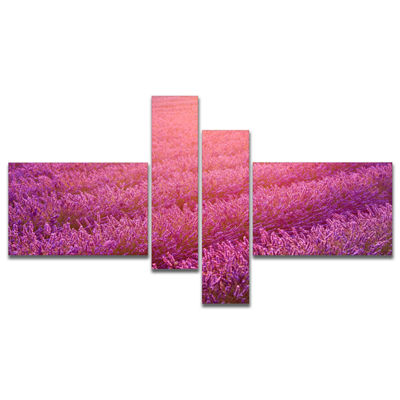 Designart Lavender Field And Ray Of Light Multipanel Floral Canvas Art Print - 4 Panels