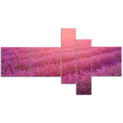 Designart Lavender Field And Ray Of Light Multipanel Floral Canvas Art Print - 5 Panels
