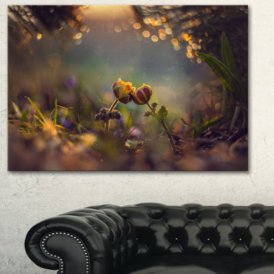 Designart Two Spring Flowers Floral Photography Art