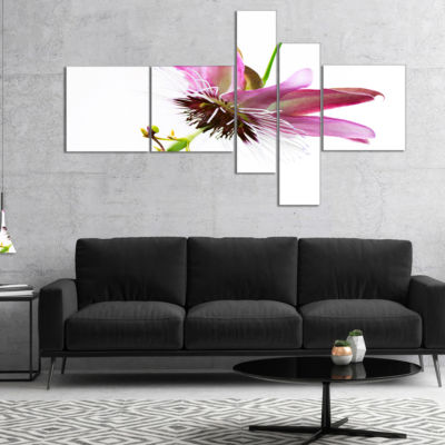 Designart Passiflora Flower Over White MultipanelLarge Animal Canvas Art Print - 4 Panels