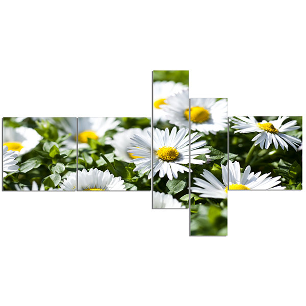 Designart Spring Background With White Flowers Multipanel Floral Canvas Art Print - 5 Panels