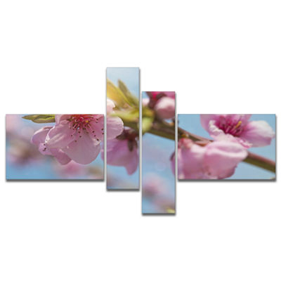 Designart Stem Of Peach Blossom Flowers MultipanelFloral Canvas Art Print - 4 Panels