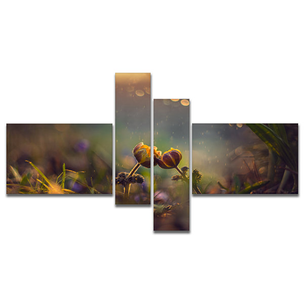 Designart Two Spring Flowers Multipanel Floral Photography Art - 4 Panels