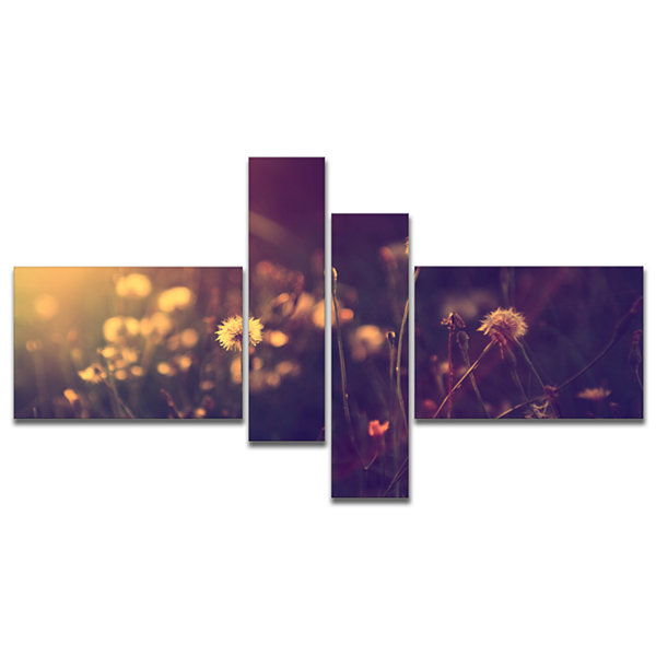Designart Vintage Dandelion Meadow Photo Multipanel Large Floral Canvas Art Print - 4 Panels
