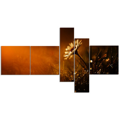 Designart White Wild Flower At Sunset After RainMultipanel Floral Canvas Art Print - 5 Panels