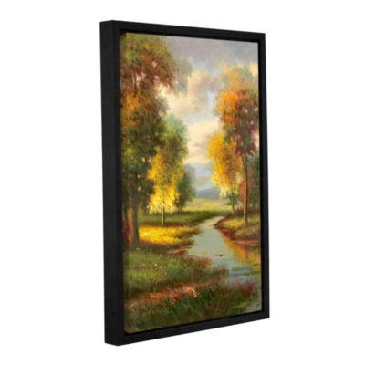 Brushstone Resplendent I Gallery Wrapped Floater-Framed Canvas Wall Art