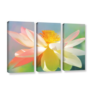 Brushstone Lotus In Flames 3-pc. Gallery Wrapped Canvas Wall Art