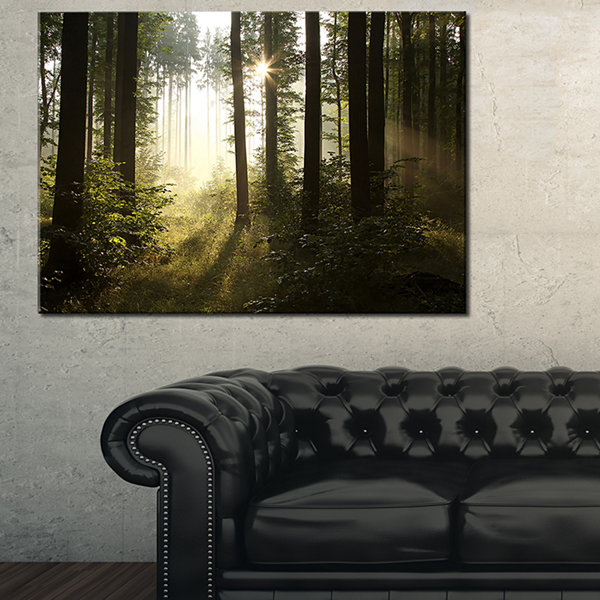 Designart Early Morning Sun In Misty Forest Landscape Photography Canvas Print - 3 Panels
