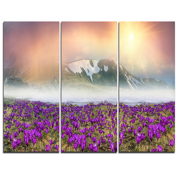 Designart Spring Crocus Flowers Landscape Photo Canvas Art Print - 3 Panels
