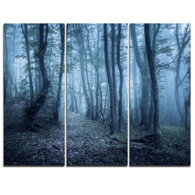 Designart Spring Foggy Forest Trees Landscape Photography Canvas Print - 3 Panels