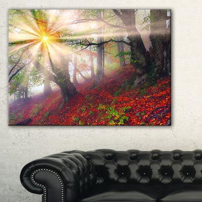 Designart Sun In Forest After Heavy Storm Landscape Photography Canvas Print - 3 Panels