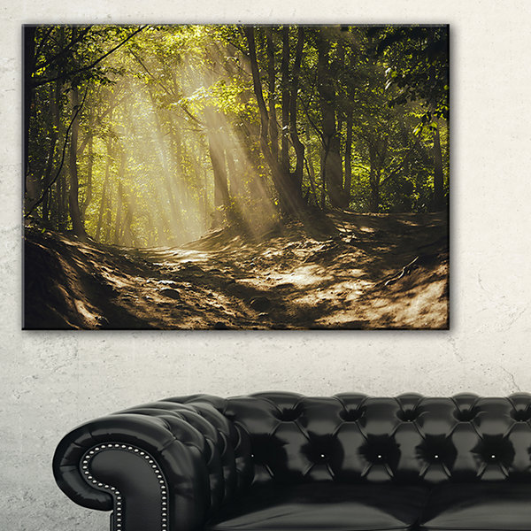 Design Art Sun Rays Through Green Trees LandscapePhotography Canvas Print - 3 Panels