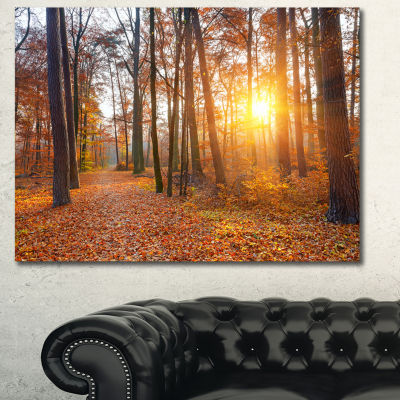 Designart Sunset In Yellow Autumn Forest LandscapePhotography Canvas Print