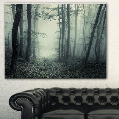Designart Trail Through Dark Forest Landscape Photo Canvas Art Print