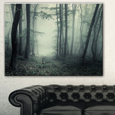 Designart Trail Through Dark Forest Landscape Photo Canvas Art Print - 3 Panels