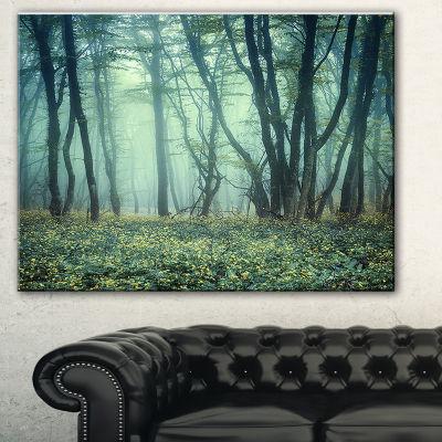 Designart Trail Through Foggy Forest Landscape Photo Canvas Art Print