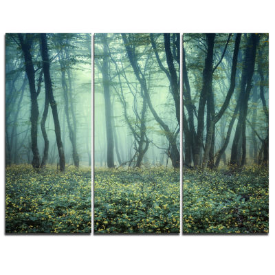 Designart Trail Through Foggy Forest Landscape Photo Canvas Art Print - 3 Panels