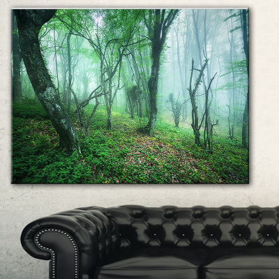 Designart Trail Through Green Forest Landscape Photography Canvas Print
