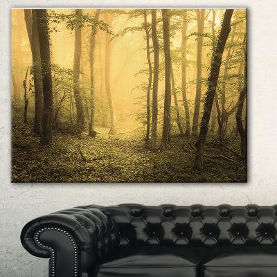 Designart Trail Through Yellow Foggy Forest Landscape Photography Canvas Print - 3 Panels