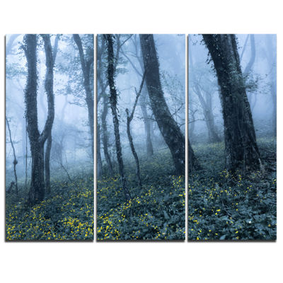 Designart Trees In Foggy Spring Forest LandscapePhotography Canvas Print - 3 Panels