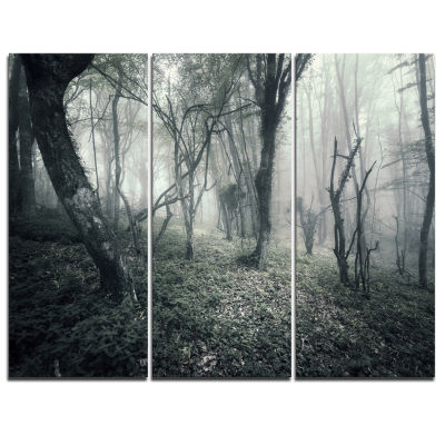 Designart Vintage Forest Filled With Fog LandscapePhotography Canvas Print - 3 Panels